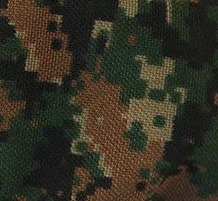 Digital Flecktarn
